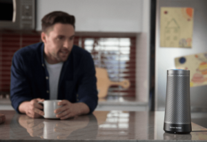 voice-enabled speaker